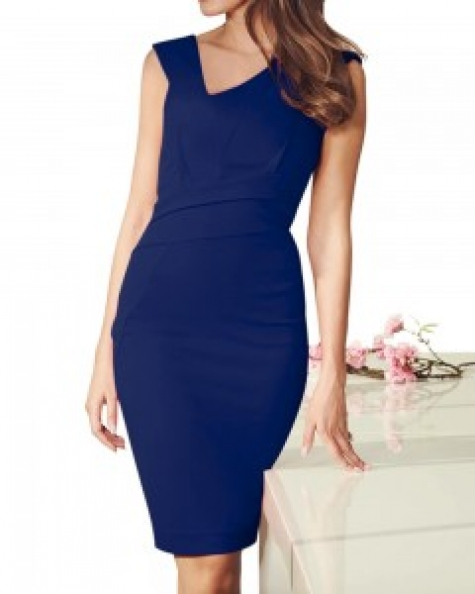 Blue Aster Fitted Dress