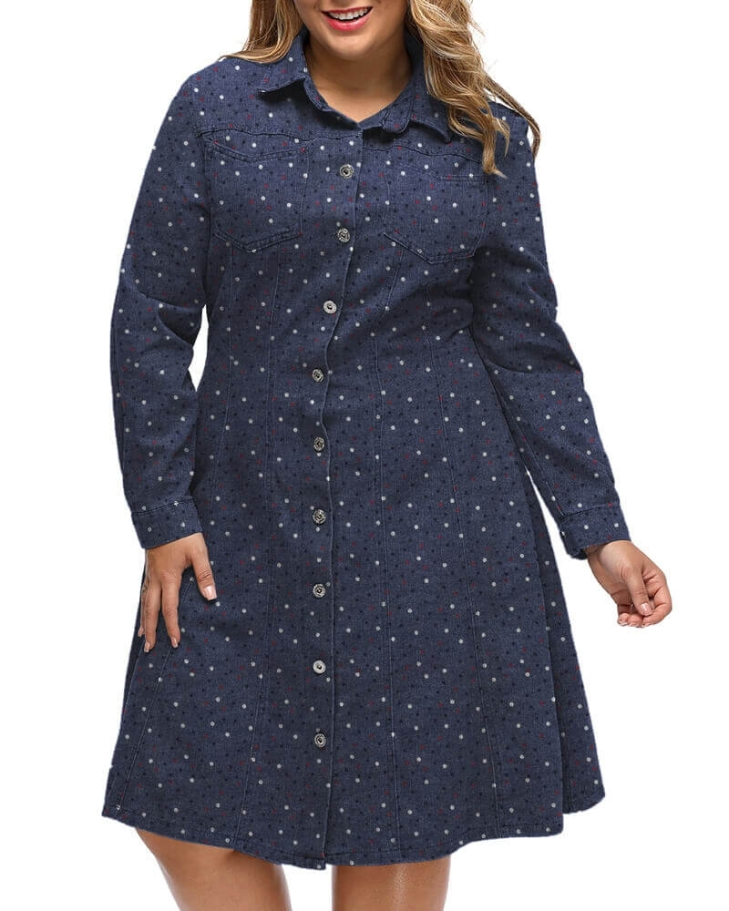 Abiah Flared Denim Shirtdress