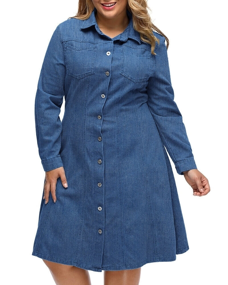 Abiah Flared Denim shirt dress